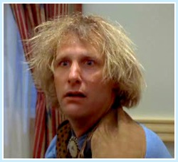 dumb-and-dumber-hair-border